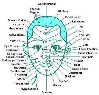 Facial reflexology map video