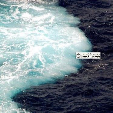 2 seas meet but do not mix insulin